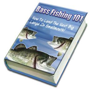 Bass Fishing 101