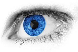 Eyewear and Eye Care