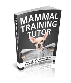 Mammal Training Tutor
